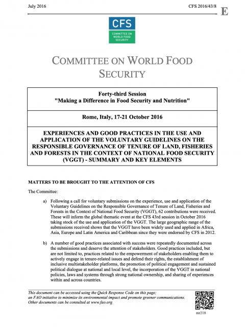 Experiences and Good Practices In The Use and Application of The Voluntary Guidelines on the Responsible Governance of Tenure of Land, Fisheries and Forests in the Context of National Food Security (VGGT) - Summary and Key Elements cover image
