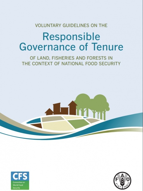 Voluntary Guide on the Responsible Governance of land fisheries and forests in the context of national food security
