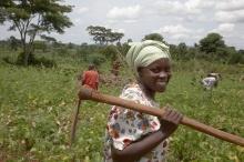 Woman farmer Uganda Department of Foreign Affairs.jpg