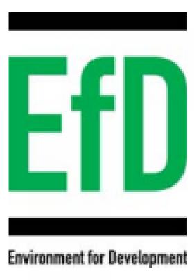 Environment for Development logo